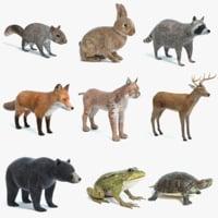 Animal Set 4