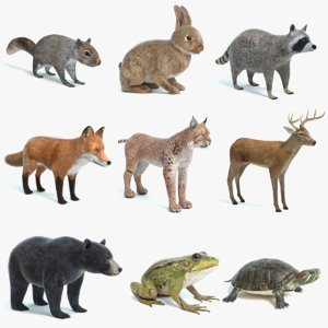 3D animals 4
