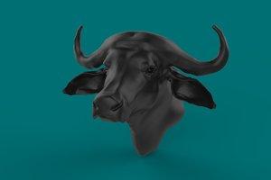 buffalo bust model