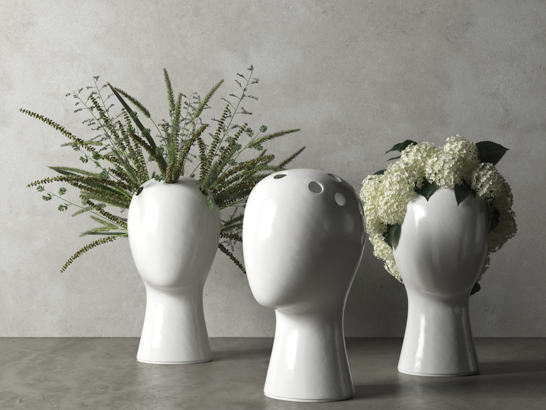 wig vases plants 3D model
