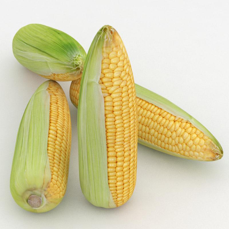 3D vegetable corn maize model