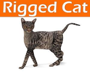 3D cat rigged