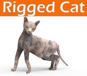 3D cat rigged model