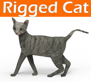cat rigged model