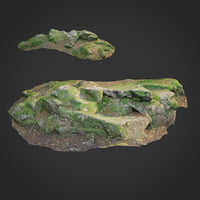 3d scanned nature forest stuff 008