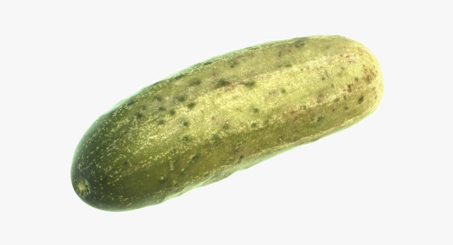 realistic cucumber 3D