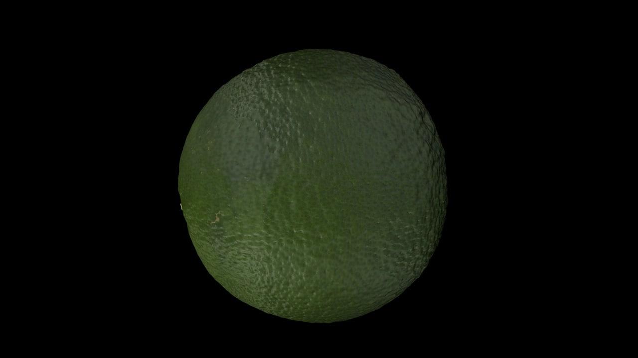 3D model green orange