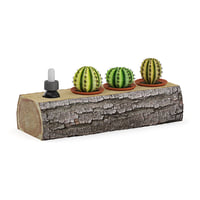 tree trunk cactuses 3D model