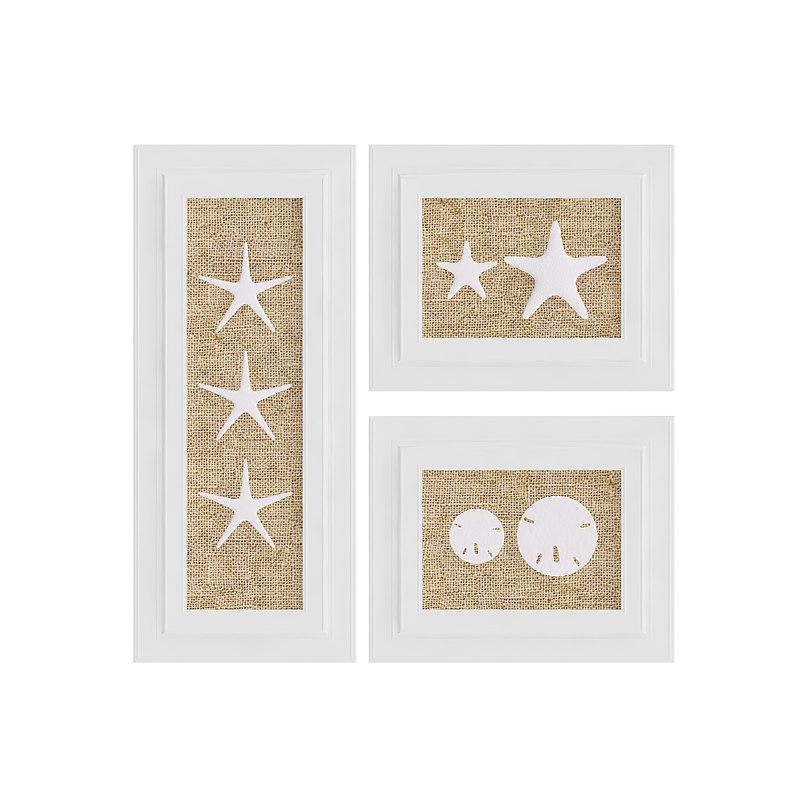 picture frames starfish decoration 3D