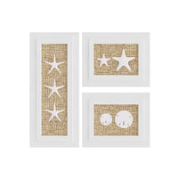 picture frames starfish decoration 3D