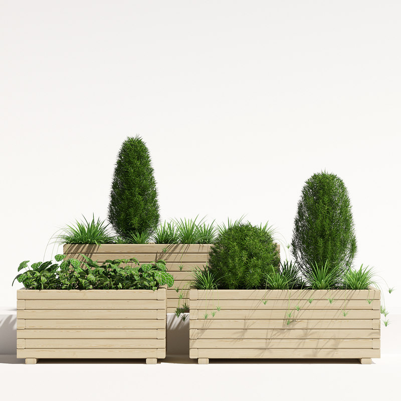 pots pine planter 3D model