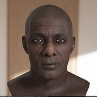 3D idris elba head v2