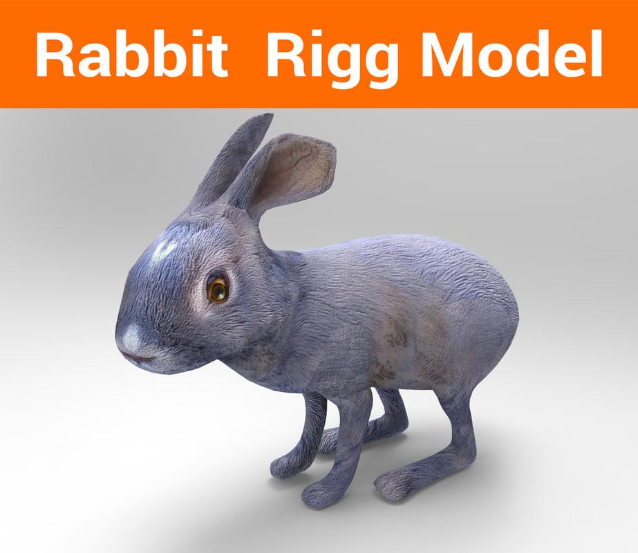 rabbit rigged 3D
