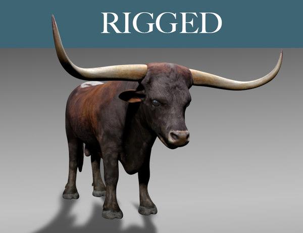 3D texas longhorn bull model