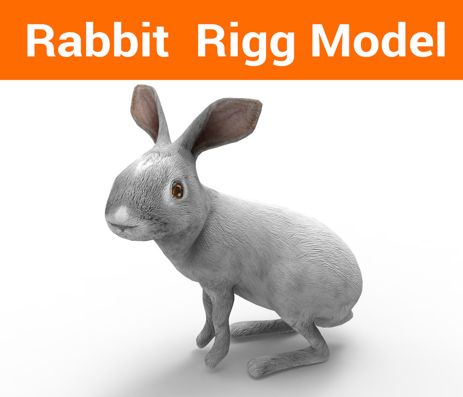 rabbit rigged 3D model