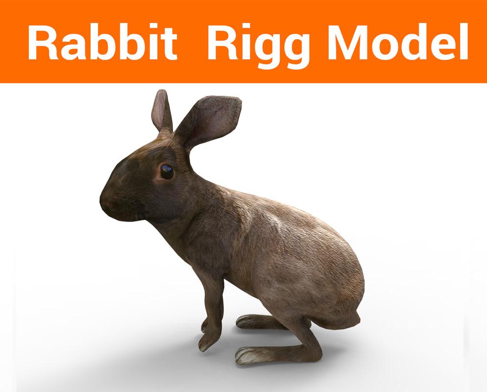 3D model rabbit rigged