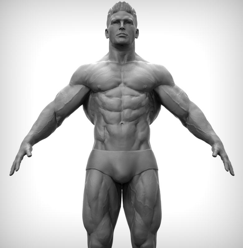 3D fitness body man model
