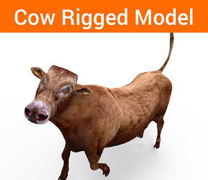 cow rigged 3D