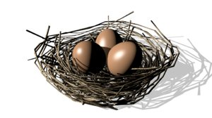 3D bird nest eggs model