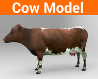 cow cattle 3D model