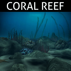 coral reef model