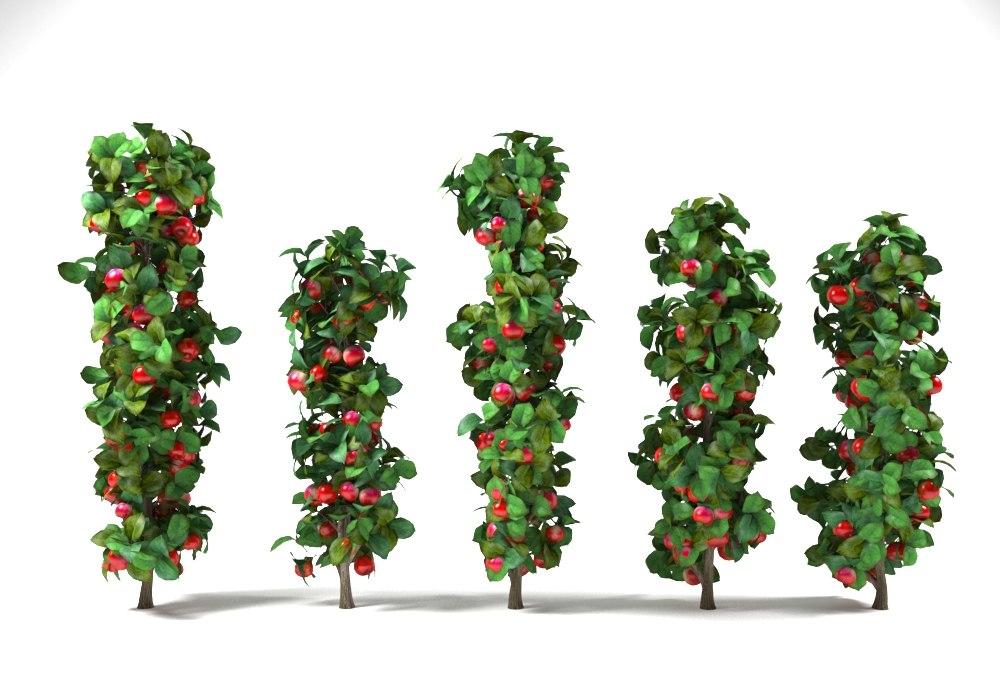 3D column apple trees set model