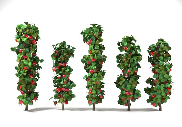 3D column apple trees set model