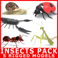 Insects Pack (5 Rigged Models)