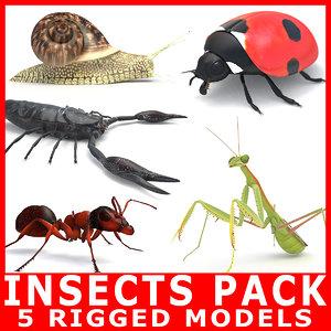 3D rigged ant mantis