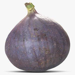 common fig model
