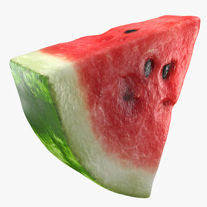 slice watermelon 3D model