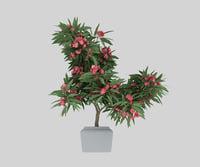 flowering tree 3D model