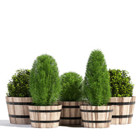 pots planter model