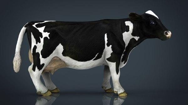 3D model cow milk
