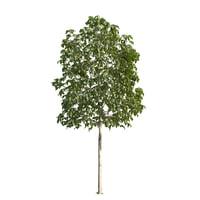 red tree 3D model