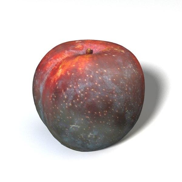 3D model big plum