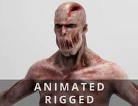 Walking Zombie (Rigged - Animated)
