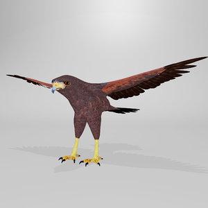 3D harris hawk model