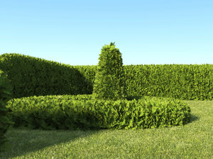 dynamic hedge 3D model