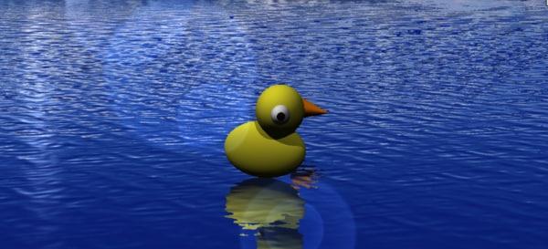 3D strata duck