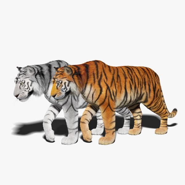 3D tiger fur rigged