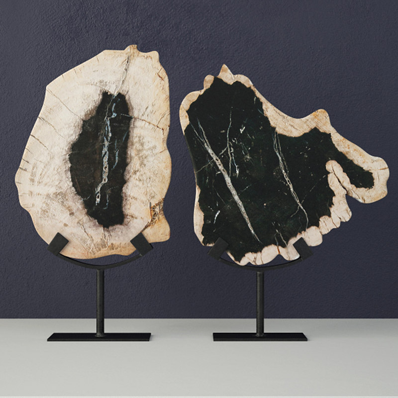 petrified wood slices stand 3D