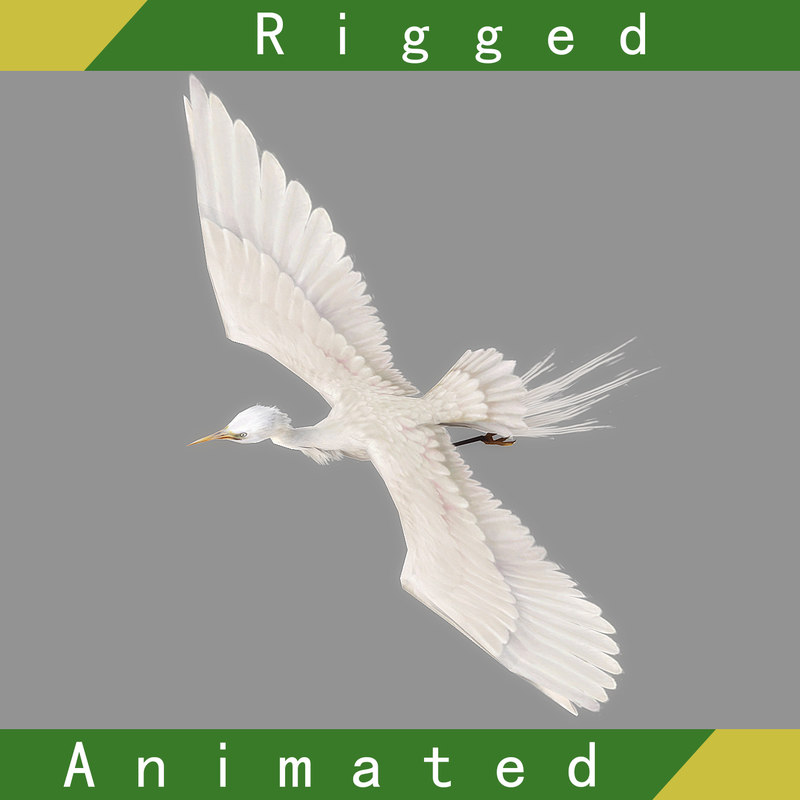 egret rigged animation 3D model