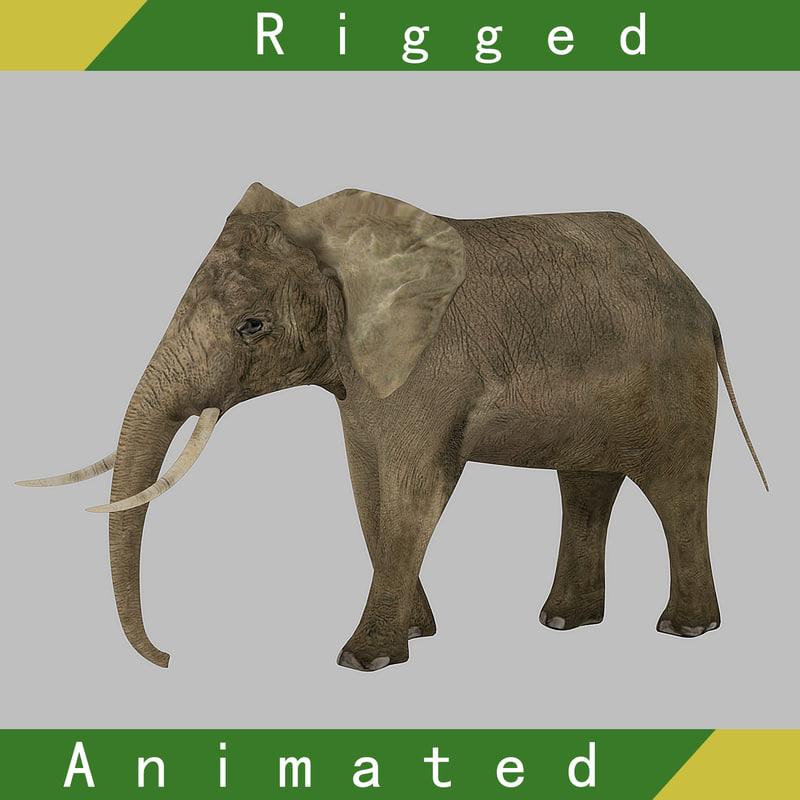 3D elephant rigged animation