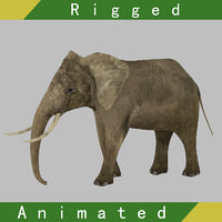 3D elephant rigged animation