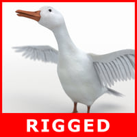 realistic white duck rigging 3D model