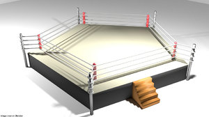 3D arena sided