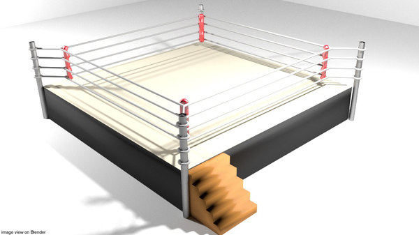3D arena ring