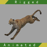 3D model cheetah rigged animation