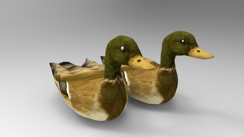 swimming ducks 3D model